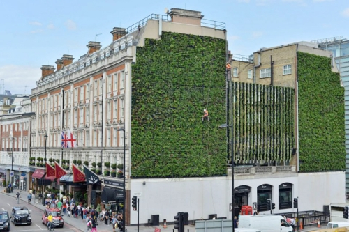 01 london-largest-livingwall1